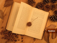 最近、自分と向き合ってますか?自分を見つめなおす時に読みたい本。